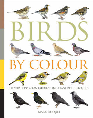 Birds by Colour (Paperback)
