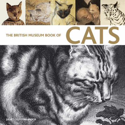 The British Museum Book of Cats: Ancient and Modern (Paperback)