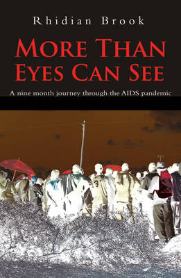 More Than Eyes Can See: A Nine Month Journey into the Aids Pandemic (Paperback)