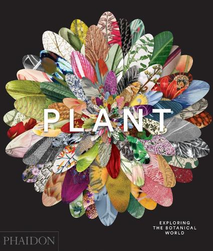 Plant: Exploring the Botanical World (Hardback)