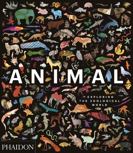Animal: Exploring the Zoological World (Hardback)