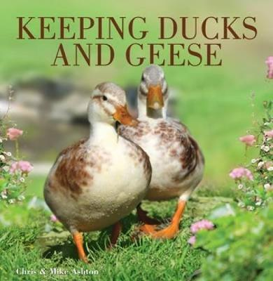 Keeping Ducks and Geese (Paperback)