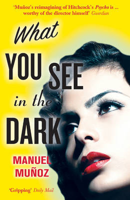 What You See In The Dark (Paperback)