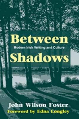 Between Shadows: Modern Irish Writing and Culture (Hardback)