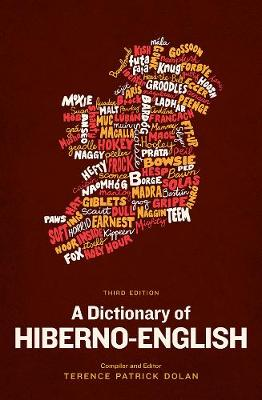 A Dictionary of Hiberno-English (Paperback)