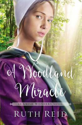 A Woodland Miracle - The Amish Wonders Series 2 (Paperback)
