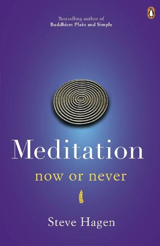Meditation Now or Never (Paperback)