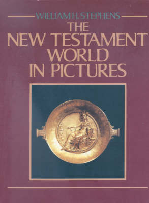 The New Testament World in Pictures (Hardback)