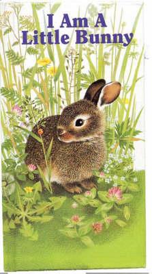 I am a Little Bunny - Furry Friends S. (Hardback)