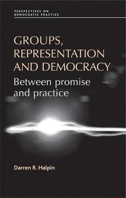 Groups, Representation and Democracy: Between Promise and Practice - Perspectives on Democratic Practice (Hardback)