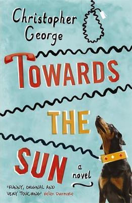 Towards the Sun (Paperback)
