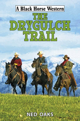 The Drygulch Trail (Hardback)