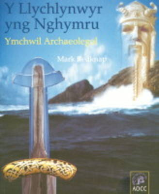 Vikings in Wales: An Archaeological Quest (Paperback)