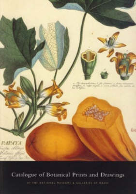 Catalogue of Botanical Illustrations: At the National Museum and Galleries of Wales (Paperback)