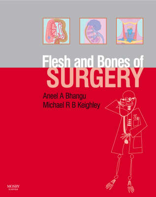 The Flesh and Bones of Surgery - Flesh & Bones (Paperback)