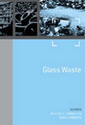 Sustainable Waste Management and Recycling: Challenges and Opportunities Volume 1 - Glass Waste - Sustainable Waste Management and Recycling 3 (Hardback)
