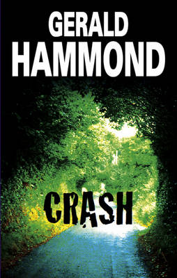 Crash (Hardback)