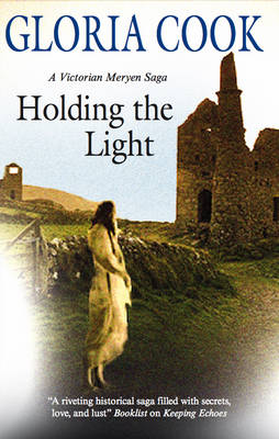 Holding the Light (Hardback)