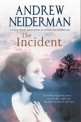 The Incident (Hardback)