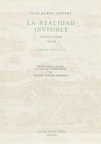 La Realidad Invisible - Coleccion Tamesis: Serie B, Textos v. 21 (Hardback)