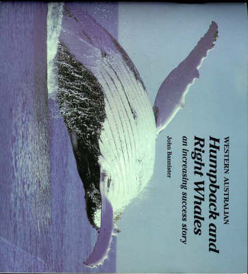Western Australian Humpback and Right Whales: An Increasing Success Story (Paperback)