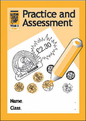 Practice/Assessment Year 3 Term 3 - B06 (Paperback)