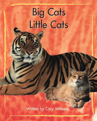 Springboard Lvl 11g: Big Cats, Little Cat (Paperback)