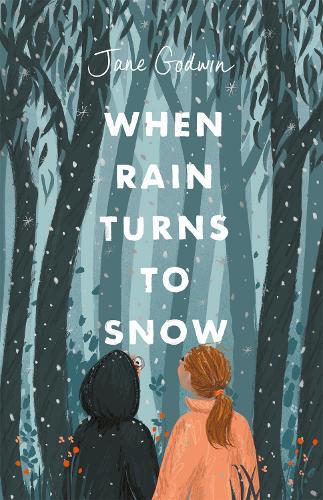When Rain Turns to Snow (Paperback)