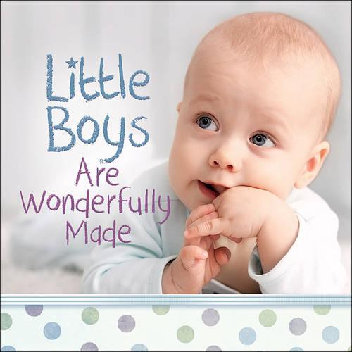 Little Boys Are Wonderfully Made (Hardback)
