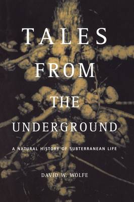Tales From The Underground: A Natural History Of Subterranean Life (Paperback)