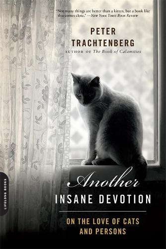Another Insane Devotion: On the Love of Cats and Persons (Paperback)