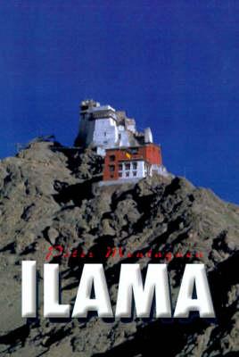 Llama (Hardback)