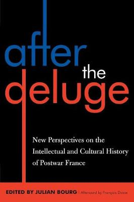 After the Deluge: New Perspectives on the Intellectual and Cultural History of Postwar France - After the Empire: The Francophone World and Postcolonial France (Paperback)