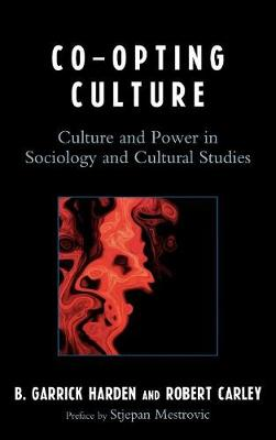 Co-opting Culture: Culture and Power in Sociology and Cultural Studies (Hardback)
