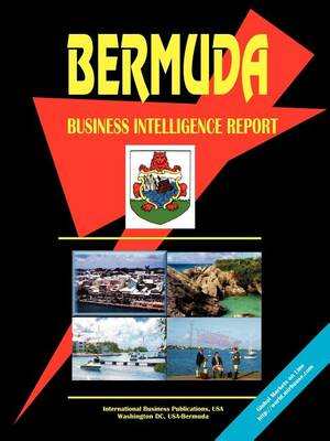 Bermuda Business Intelligence Report (Paperback)