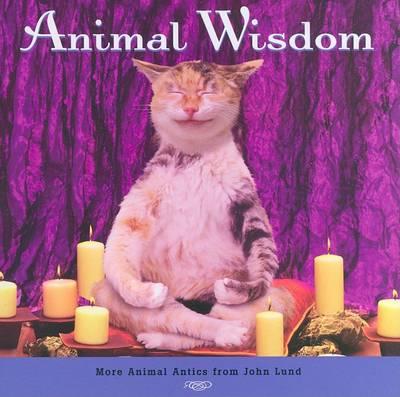 Animal Wisdom (TB): More Animal Antics from John Lund (Hardback)