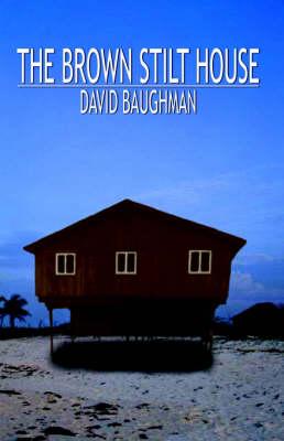 The Brown Stilt House (Paperback)