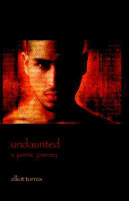 Undaunted: A Poetic Journey (Paperback)
