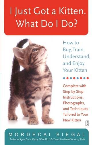 I Just Got a Kitten. What Do I Do?: How to Buy, Train, Understand, and Enjoy Your Kitten (Paperback)
