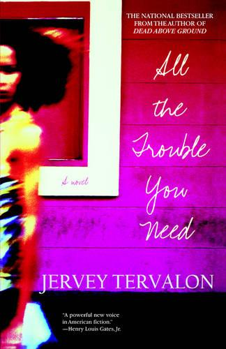 All the Trouble You Need (Paperback)