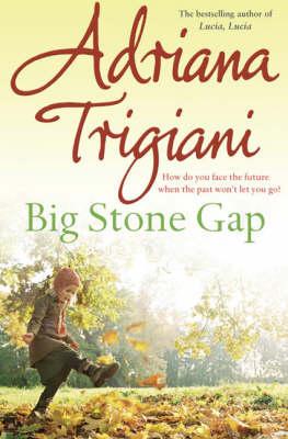 Big Stone Gap (Paperback)
