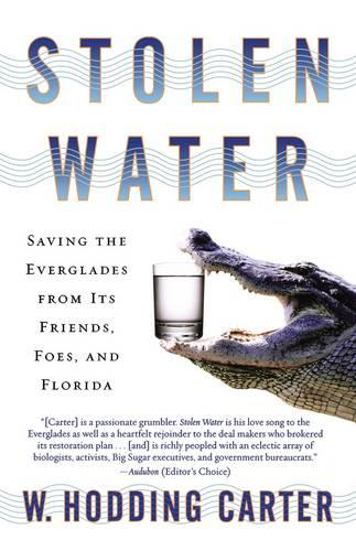Stolen Water: Saving the Everglades from Its Friends, Foes, and Florida (Paperback)