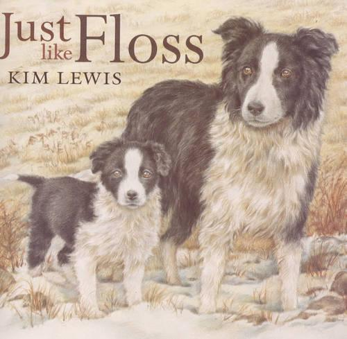 Just Like Floss (Paperback)