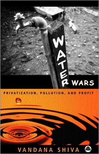 Water Wars: Pollution, Profits and Privatization (Paperback)