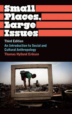 Small Places, Large Issues: An Introduction to Social and Cultural Anthropology - Anthropology, Culture and Society (Hardback)