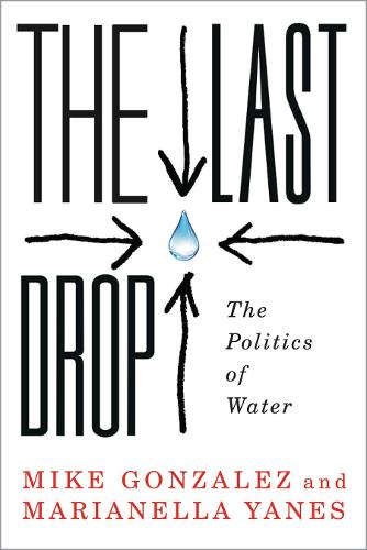 The Last Drop: The Politics of Water (Paperback)