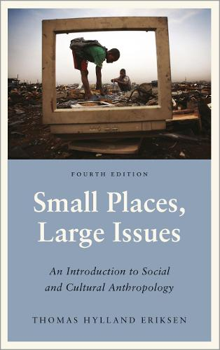 Small Places, Large Issues: An Introduction to Social and Cultural Anthropology - Anthropology, Culture and Society (Paperback)