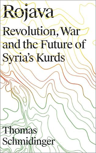 Rojava: Revolution, War and the Future of Syria's Kurds (Paperback)