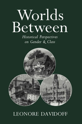 Worlds Between: Historical Perspectives on Gender and Class (Paperback)