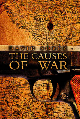 The Causes of War (Paperback)